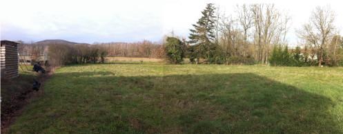 Maison à ossature bois : Panorama